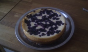 new york blueberries cheesecake - klar til servering